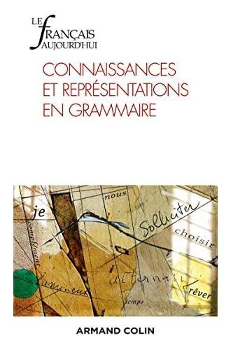 Connaissances et représentations en grammaire